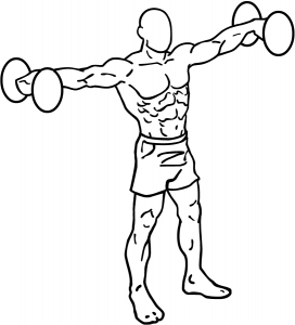 everkinetic lateral raises