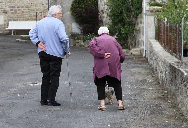 elderly couple canes